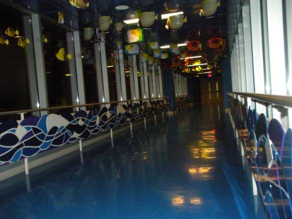 DSCN8751  Skywalk Night Reflection