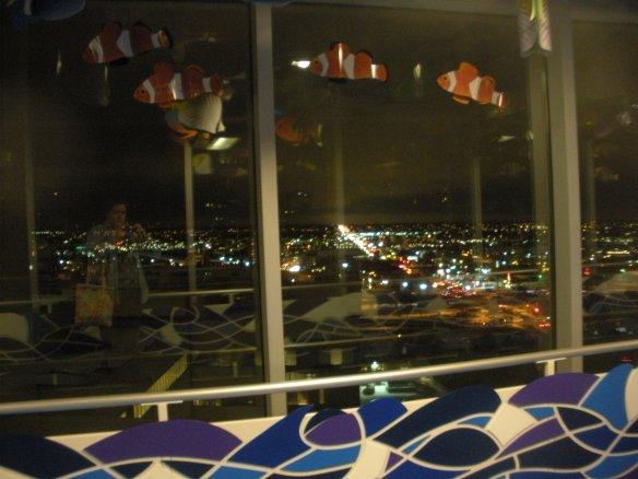 DSCN8767  Skywalk Window Reflection