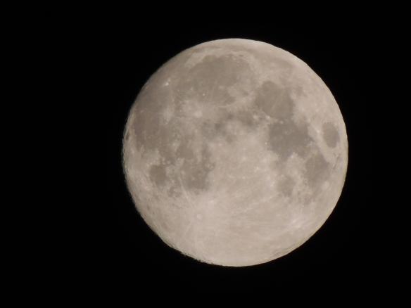 DSCN2112  Full Moon or Canteloupe