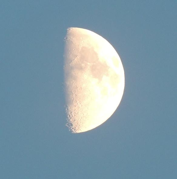 Moon 1 DSCN2064, cropped
