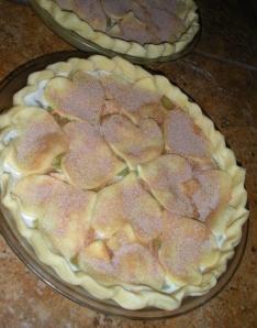 I baked 2 of these rhubarb custard pies last night.