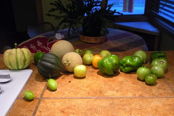 The last of the garden goodies this year