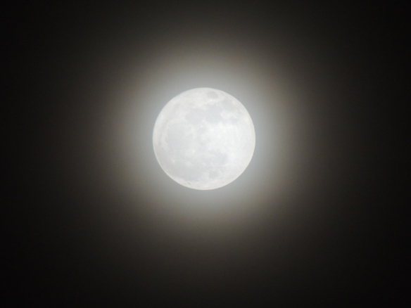 X is for eXtra bright moon on a foggy night