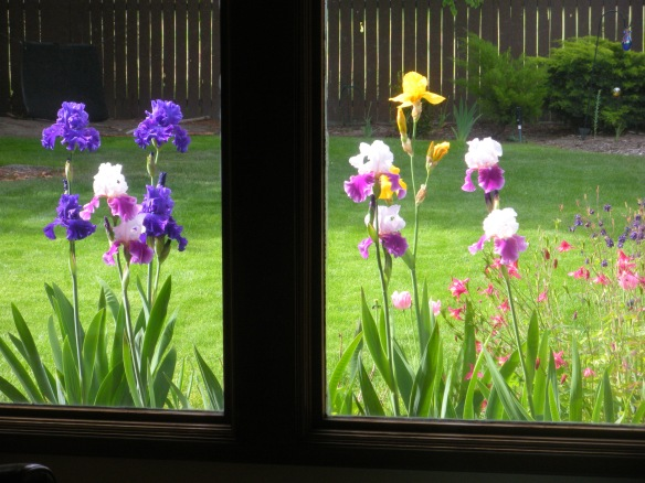 living room view in late May