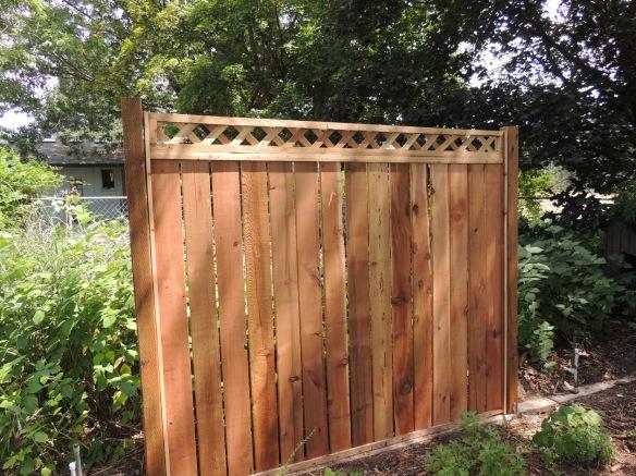 DSCN3755 new fence section
