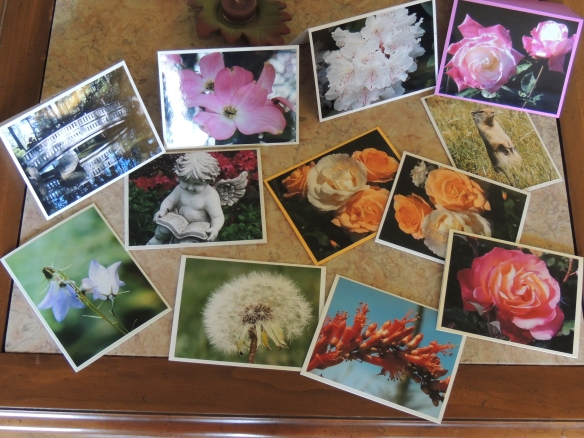 Some of the photo note cards I make to sell, gift, and personally use