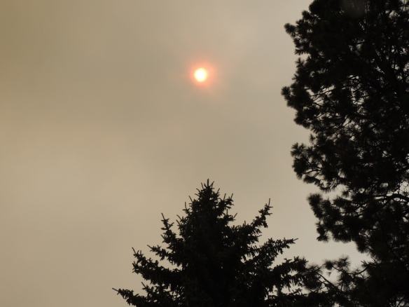 Looking up at the sun through smoky skies, August 2015