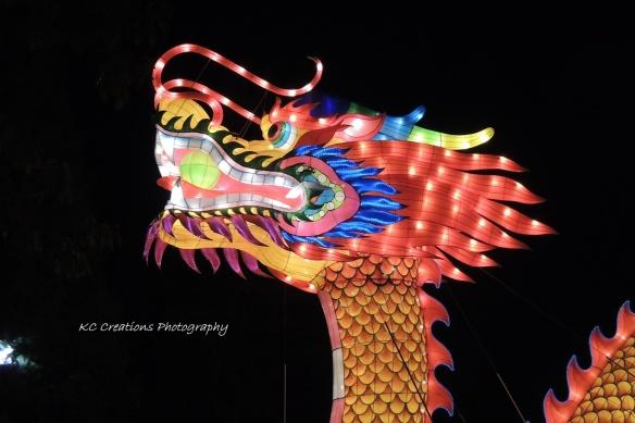 Dragon head 4x6 WEBshare