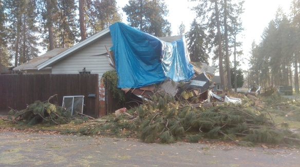 windstorm damaged house Nov. 2015, websized