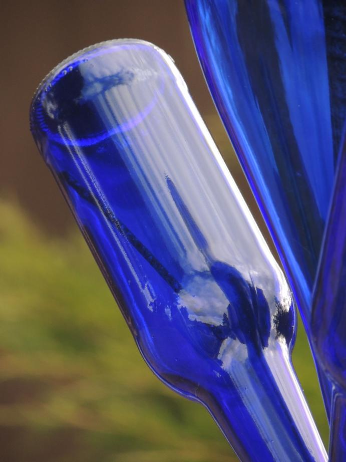 DSCN7604  bottle tree love, WEBSIZED