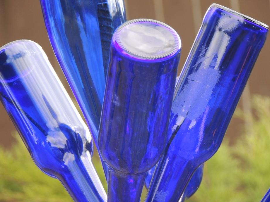 DSCN7606  bottle tree WEBSIZED