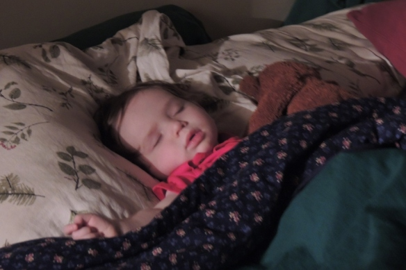 dscn1626-napping-4x6-webshare
