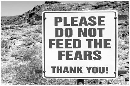 fears_board