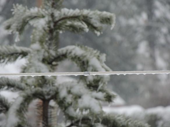 february-freezing-rain