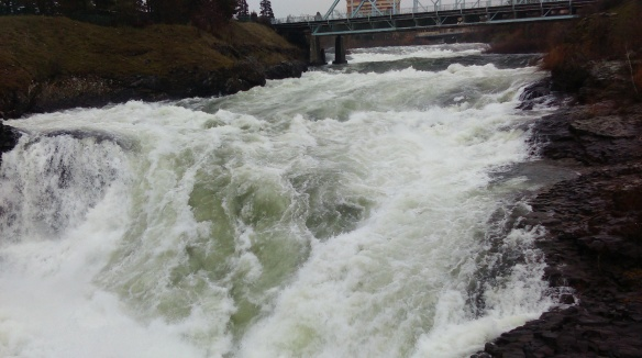 Spokane River in March, rain and melt