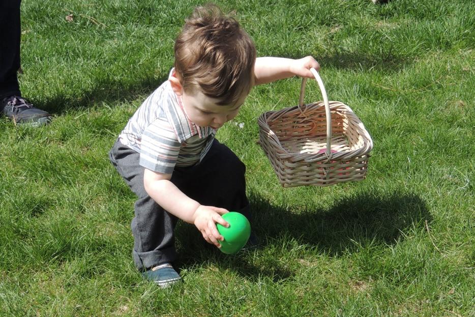 DSCN1991 green egg, WEBSIZED