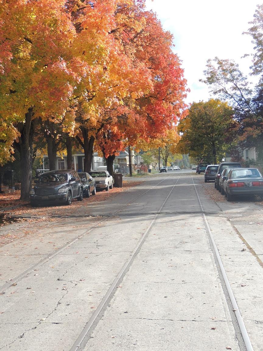 DSCN3469 West Central streetcar tracks