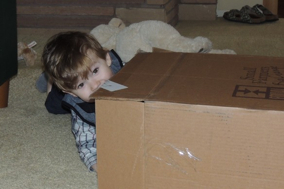 Boxes make the best toys
